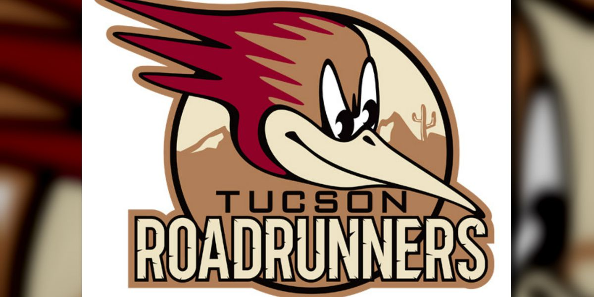 Tucson Roadrunners name Steve Potvin head coach