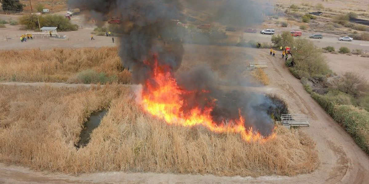 SEEING SMOKE? It could be the controlled burn at Sweetwater Wetlands