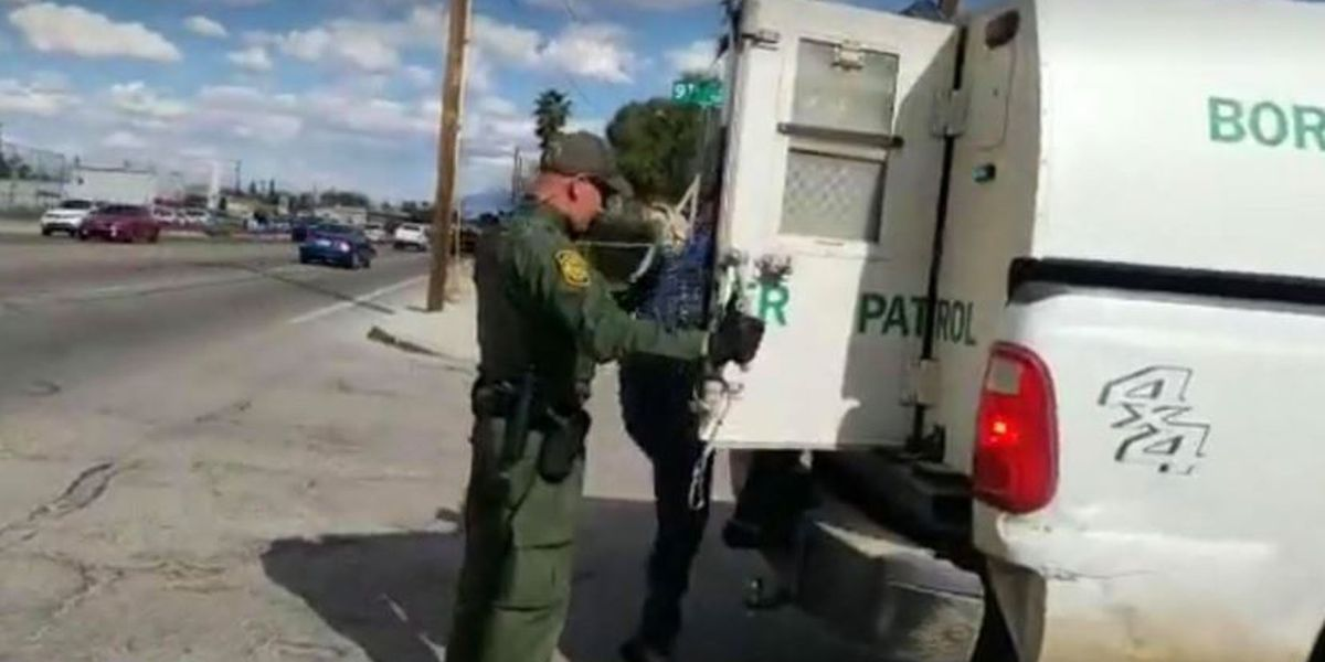 Border Patrol detains family after traffic stop