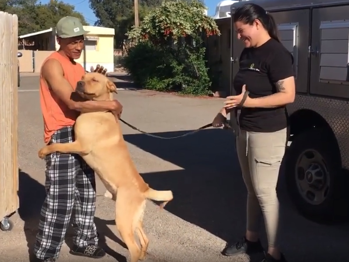 Dog cries after being reunited with owner thanks to PACC