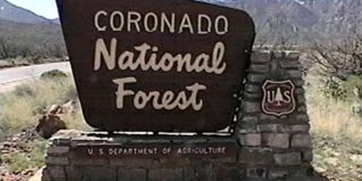Public input on amenities in Coronado National Forest