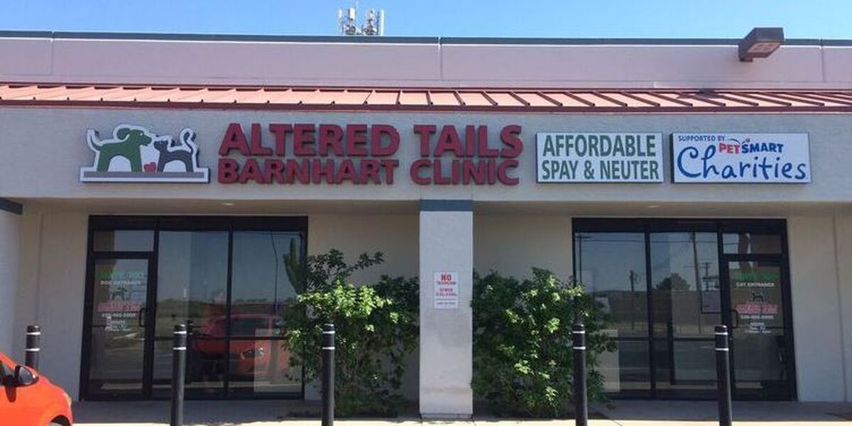Altered Tails offering free spay/neuter surgery to those living in high stray areas