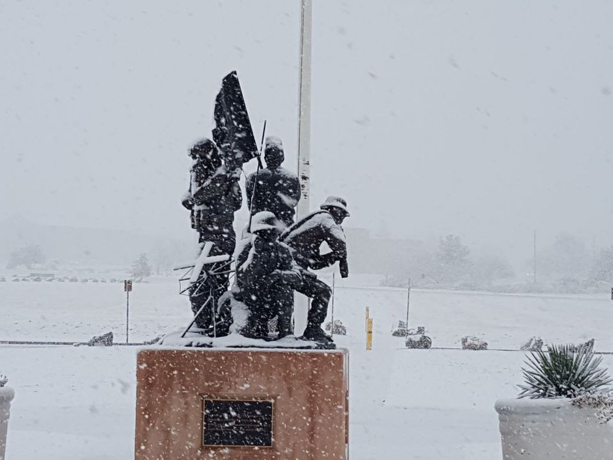 video southern arizona residents get chance to play in snow southern arizona residents get chance
