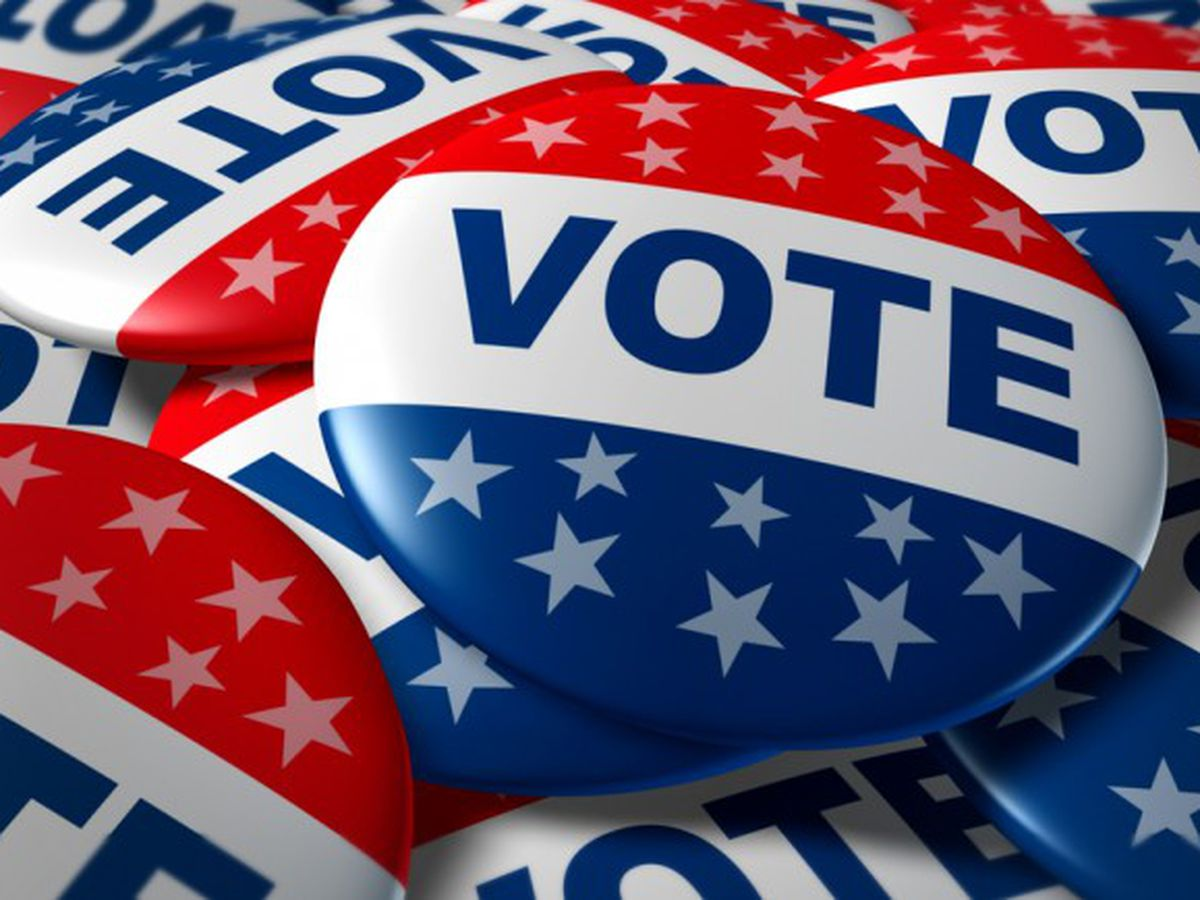 Polls open for primary election