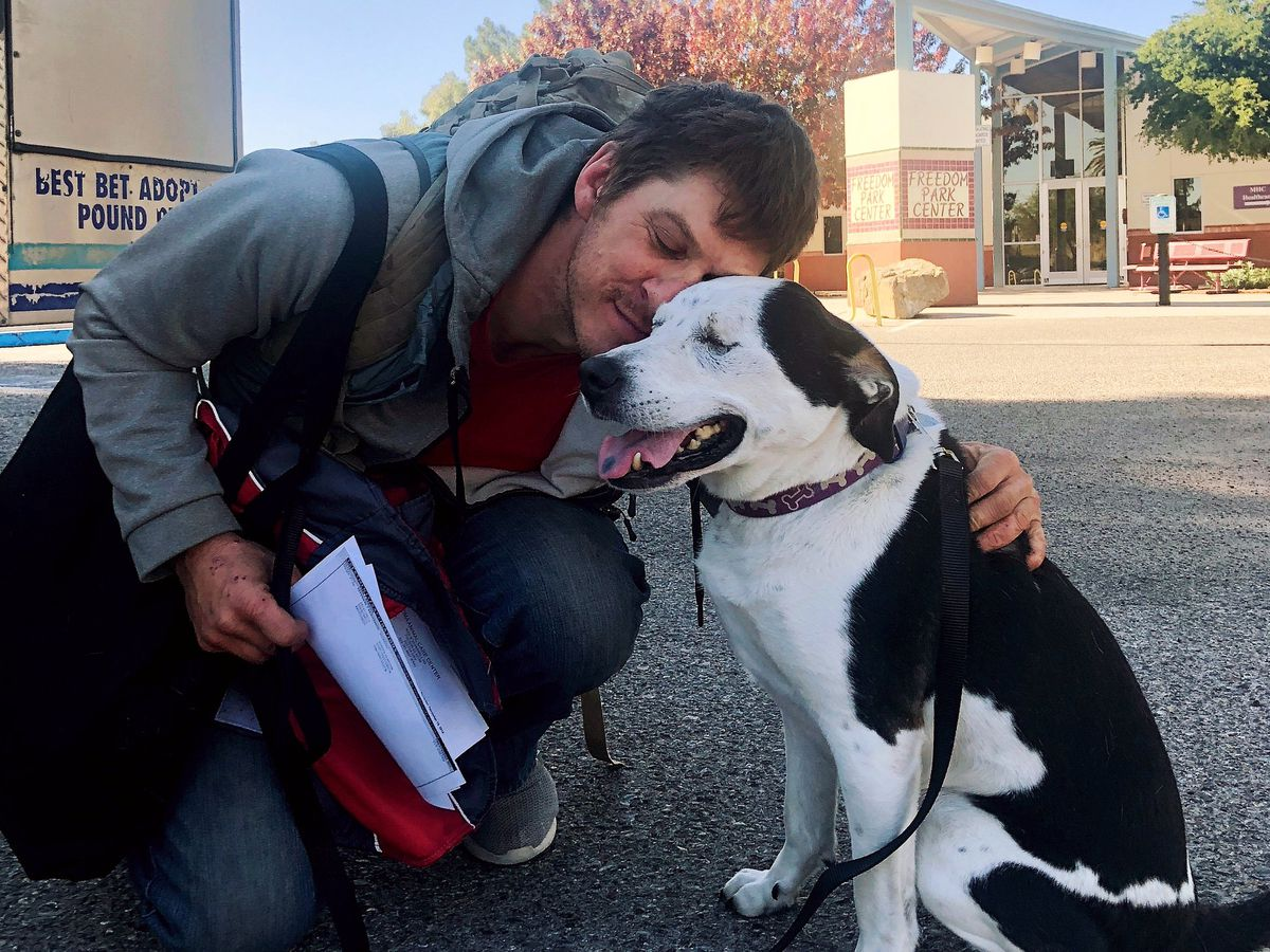 Man's touching reunion with dog will leave you in tears