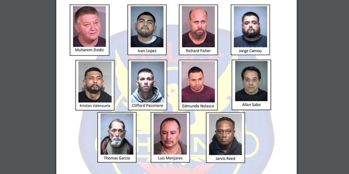 Police in Phoenix, Chandler arrest 11 men in online sex crimes investigation