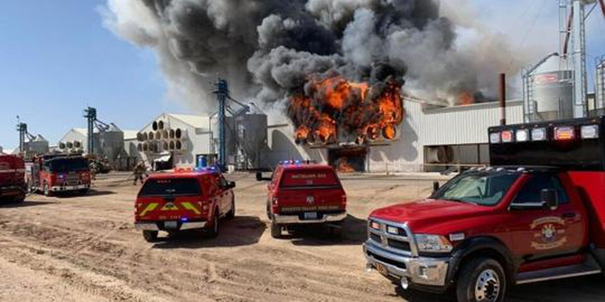165K hens dead after Hickman's Family Farms barn fire in Arizona