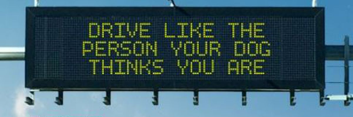 ADOT announces Safety Message Contest winners