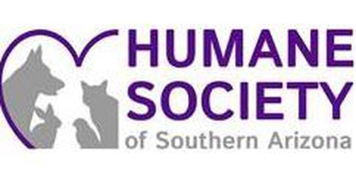 Humane Society offers discounted spay/neuter services
