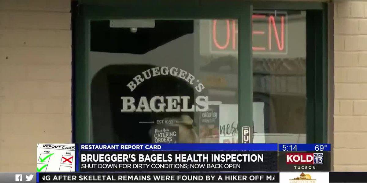 Restaurant Report Card: Brugger's Bagels near UA flagged for insects, unsanitary work conditions