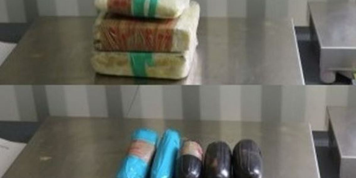 CBP officers, canines had a busy Tuesday stopping drug smuggling attempts at AZ ports of entry