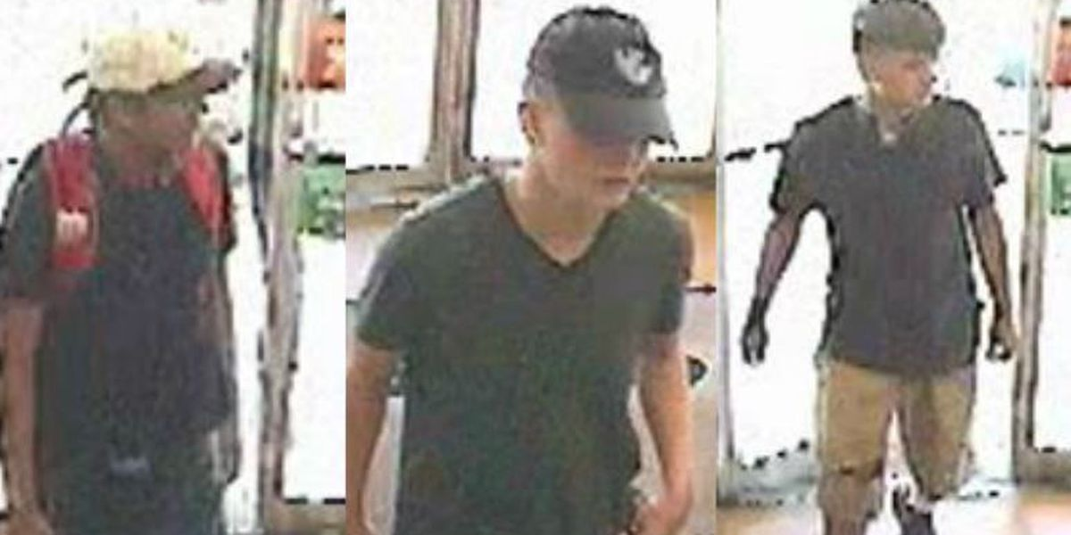 PCSD searching for armed robbery suspects