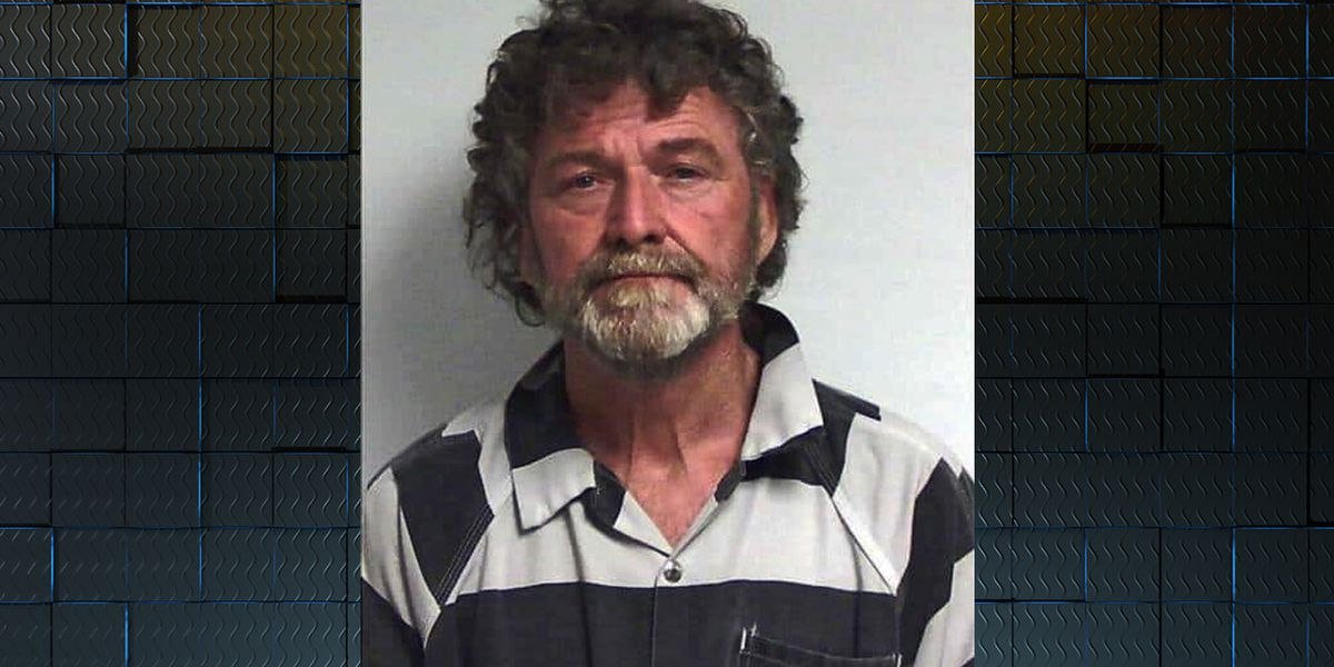 Man arrested after more than 700 dogs rescued from South GA puppy mill