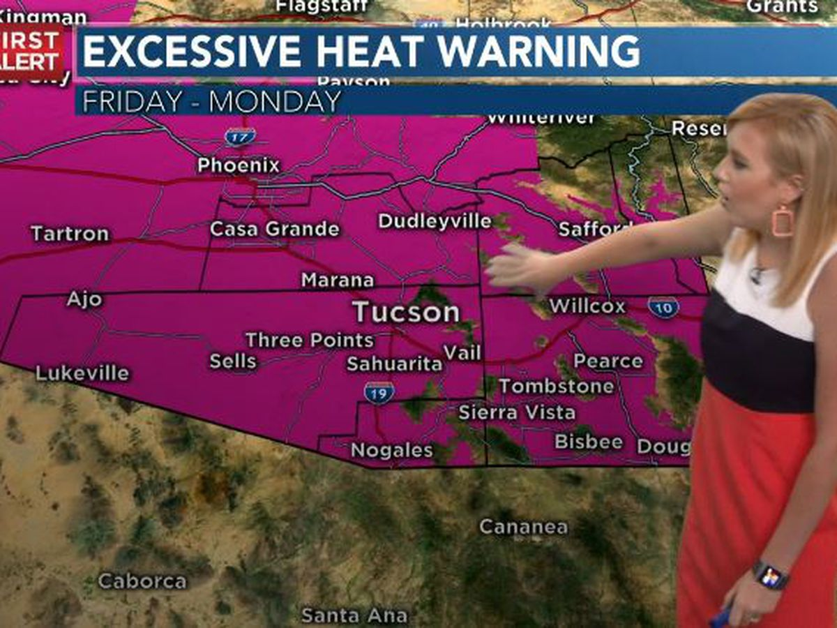 ACTION DAYS: Dangerous heat in forecast