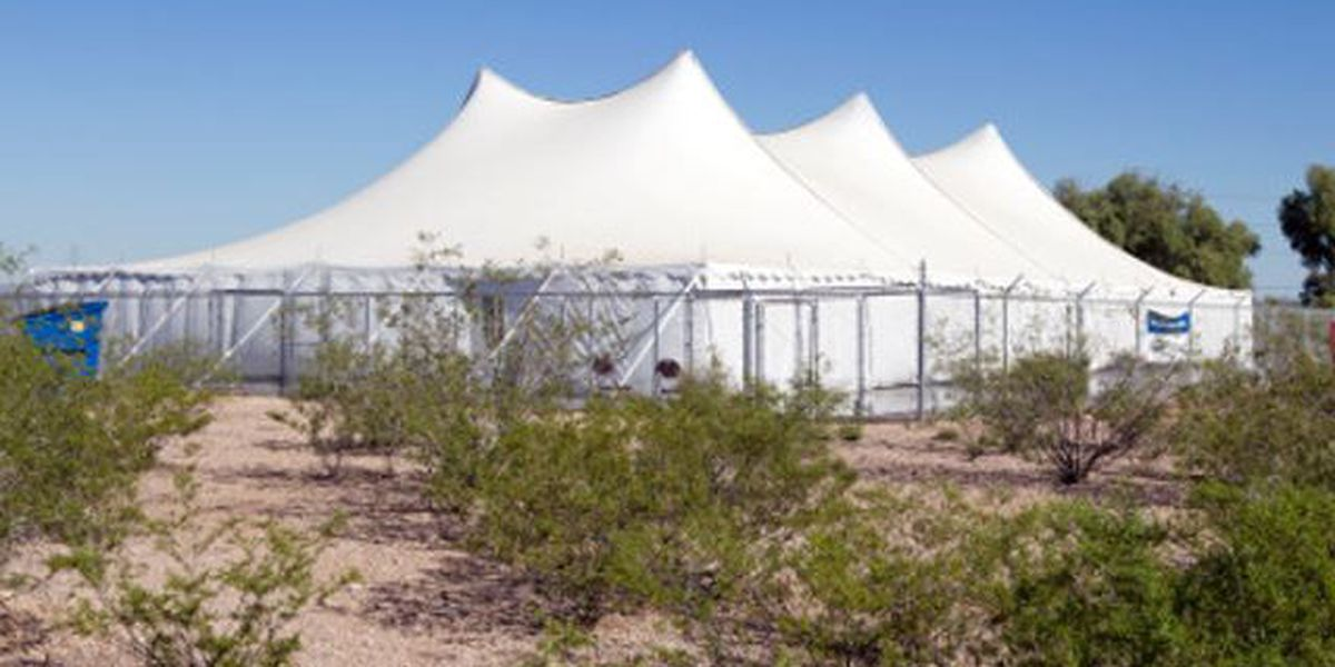 PACC holding Empty the Tent event during June