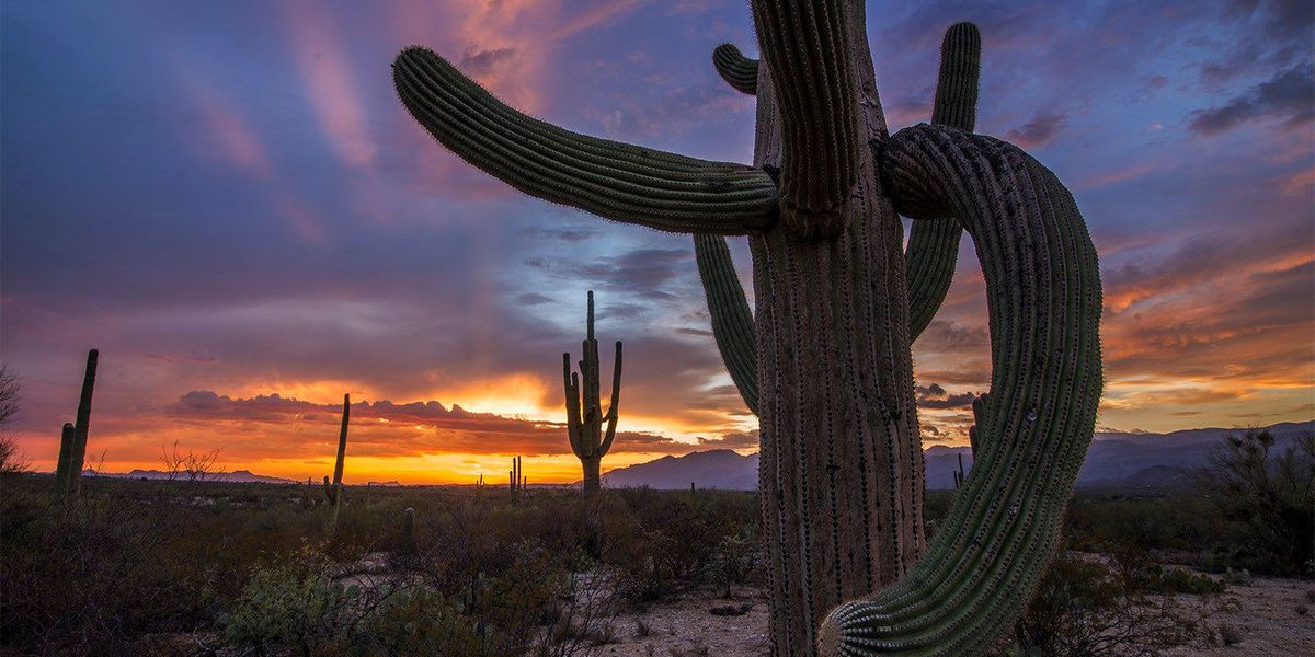 What makes sunsets so great in Arizona?