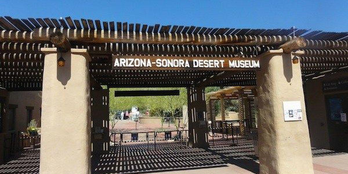 Travel site lists Arizona-Sonora Desert Museum among top 25 in U.S.