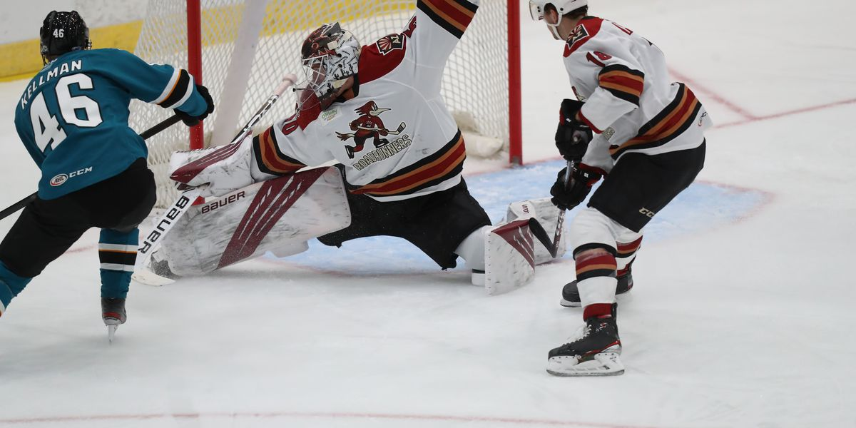 Tucson Roadrunners win second straight over San Jose
