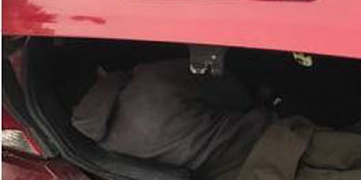 Phoenix couple facing human smuggling charges after man found in trunk