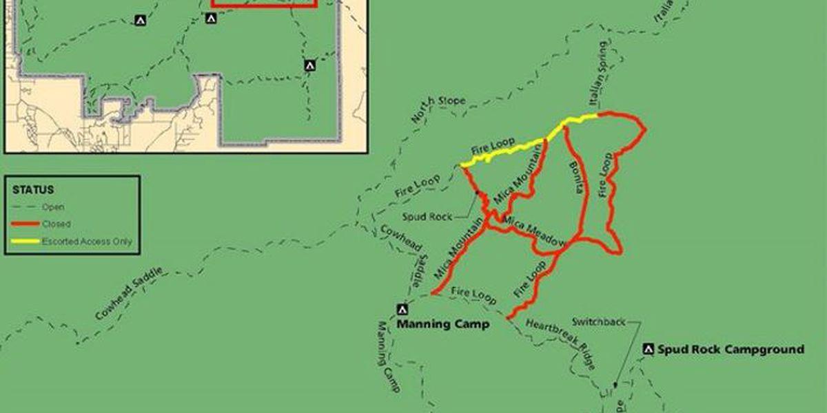 Saguaro National Park planning prescribed burn in Rincon Mountains