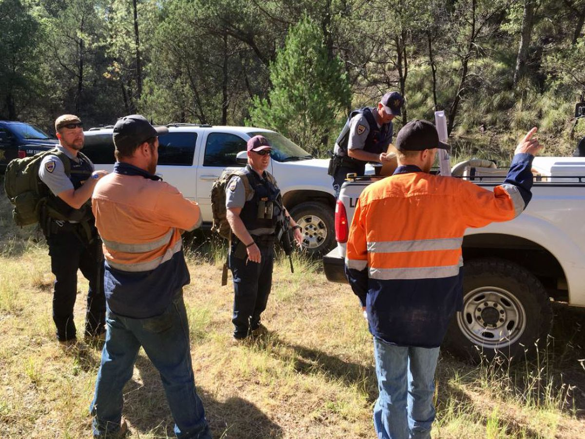 Wildlife officials search for bear that attacked person near Patagonia