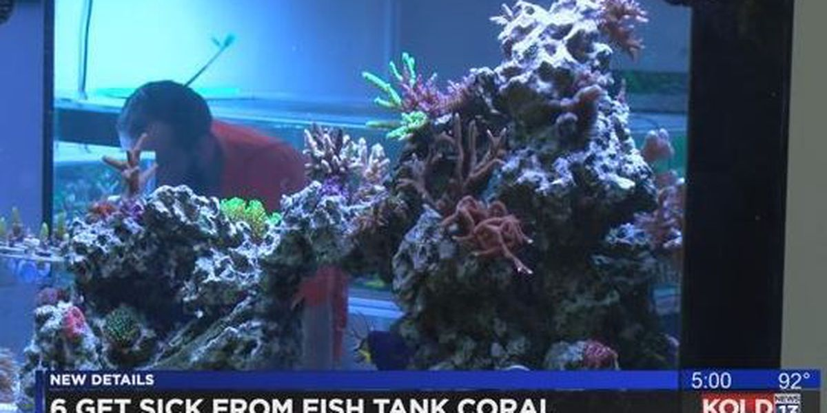TFD: Toxins from coral send six to hospital