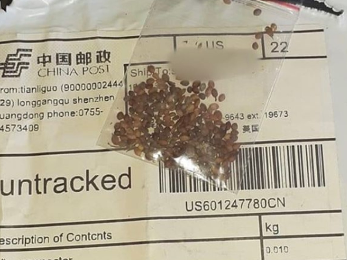 Arizonans now among those receiving mysterious, unsolicited seeds that appear to be sent from China