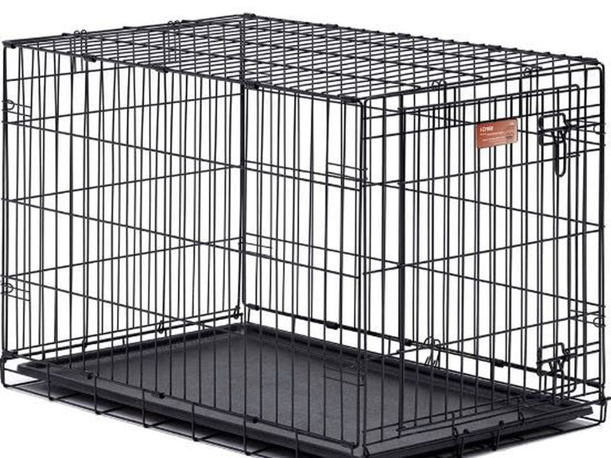 PACC in need of dog crates, kennels
