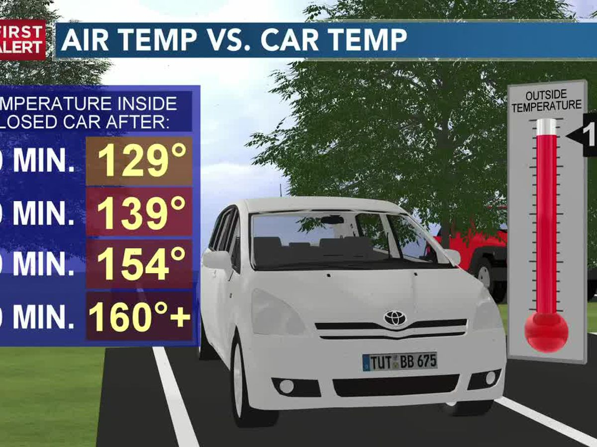 Hot cars could hit deadly temperatures this weekend
