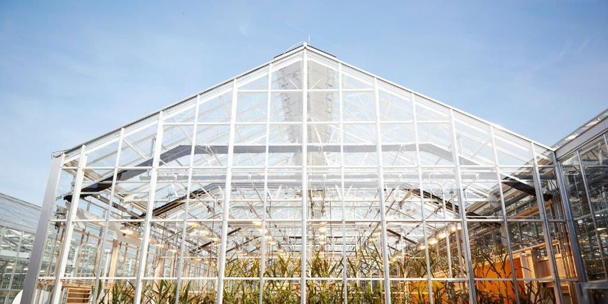 Monsanto to go ahead with greenhouse in Pima County without tax help