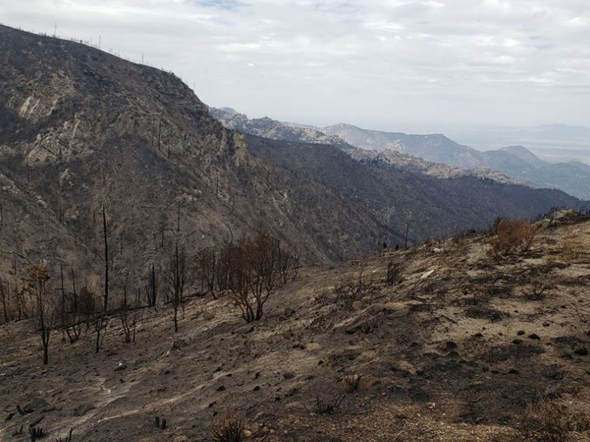 GREAT NEWS! Bighorn Fire continues to show little growth, containment remains to 75 percent