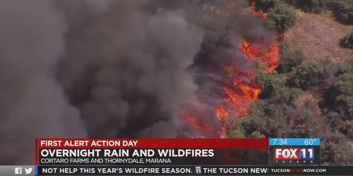 Rain brings temporary relief for fire crews