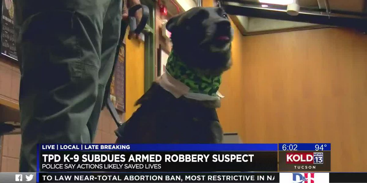 TPD K-9 subdues armed robbery suspect
