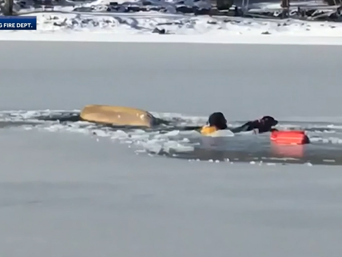 WATCH: Man, dog rescued after falling through ice in Massachusetts
