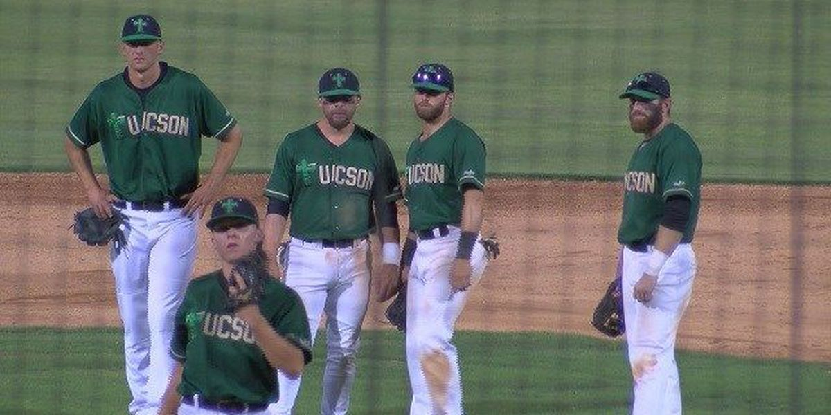 Saguaros making strong first impression