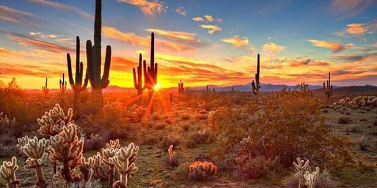 CELESTIAL SMACKDOWN: Saguaro NP drops hammer in sunset showdown