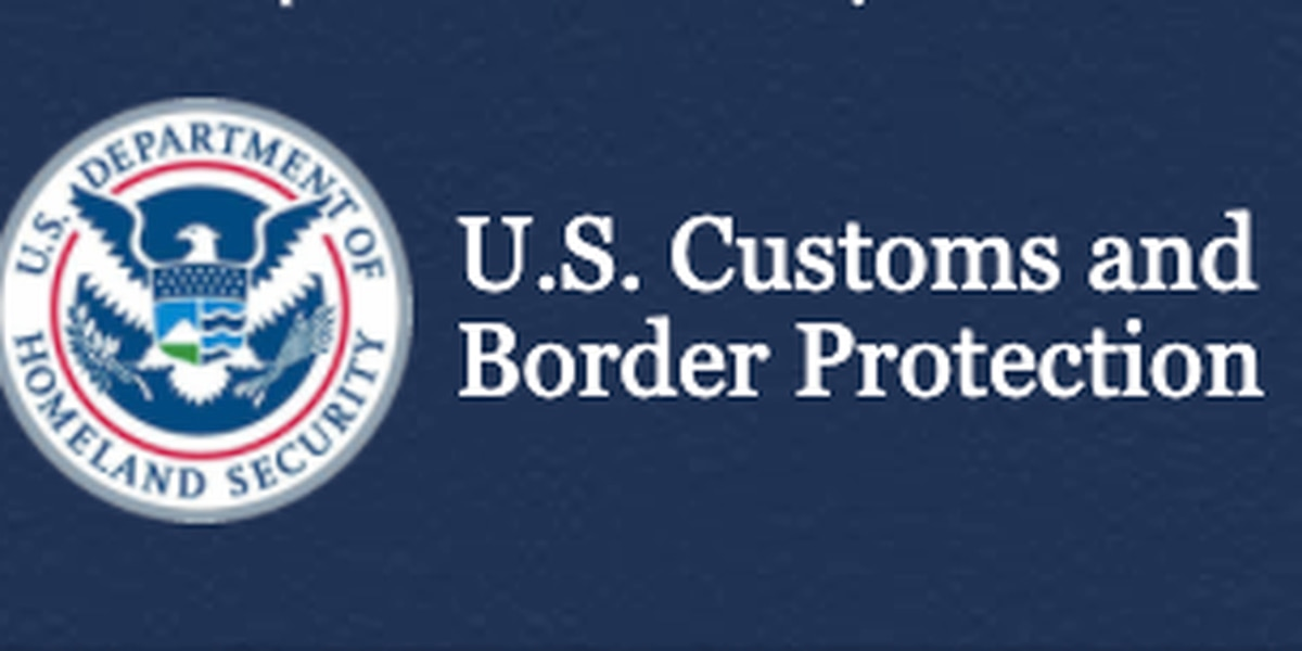 CBP field operations seizes over $3 million in narcotics at Progreso Port of Entry