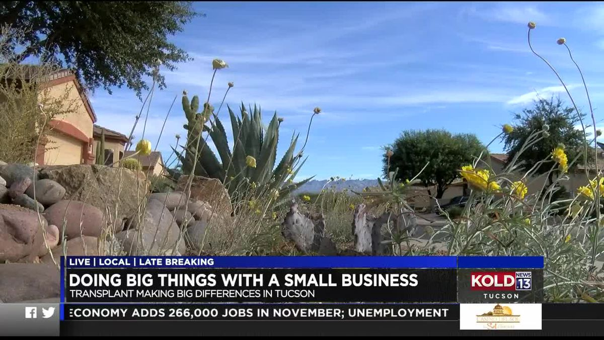 Award honors small business with dreams to make a difference