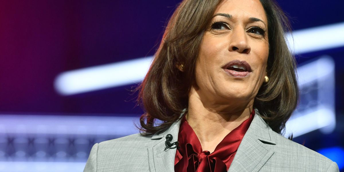 Biden picks Kamala Harris as running mate, first black woman