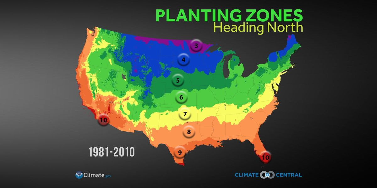 Gardeners beware, hotter temperatures could lead to a change in crop