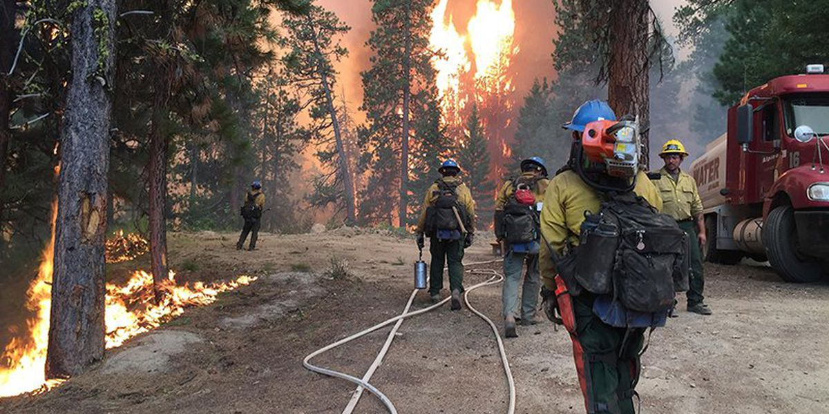 Fire officials claim success in fighting COVID-19 while fighting fires