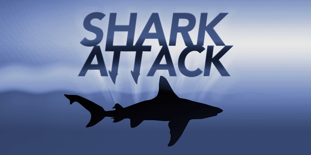Pregnant woman pulls husband to safety after shark attack in Florida