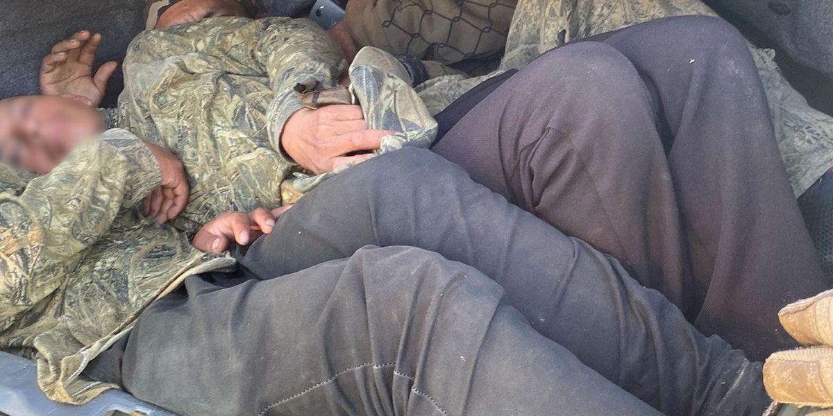 Border Patrol arrests six in alleged human smuggling attempt