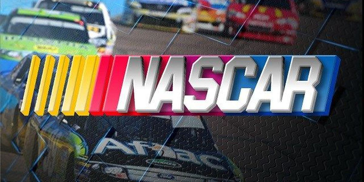Bowman and Busch crash out on 500's final lap