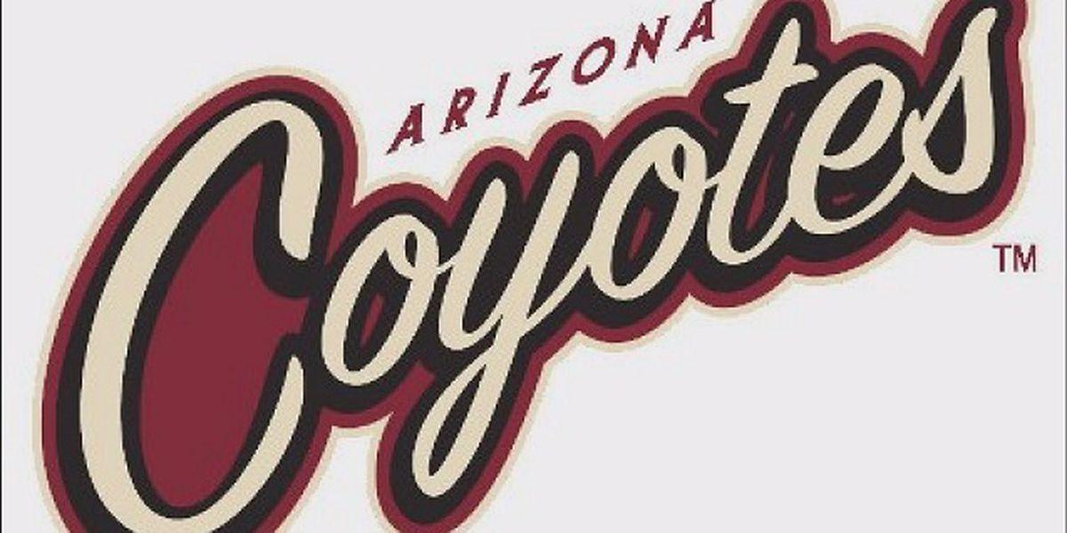Hinostroza scores winner, Coyotes beat slumping Maple Leafs