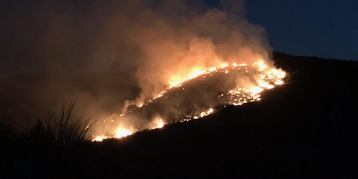 Update: Bolt Fire in Tonto National Forest at 1,420 acres