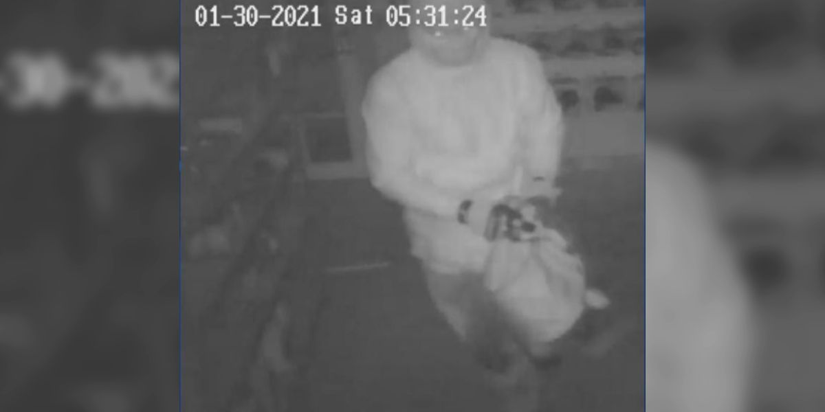 ATF searches for suspect in Payson gun store burglary