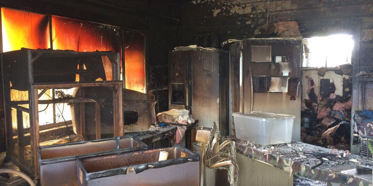 Rescue animals perish in northwest side house fire