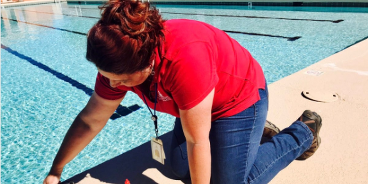 Brotes de 'Cripto' incrementan en las piscinas del Condado Pima