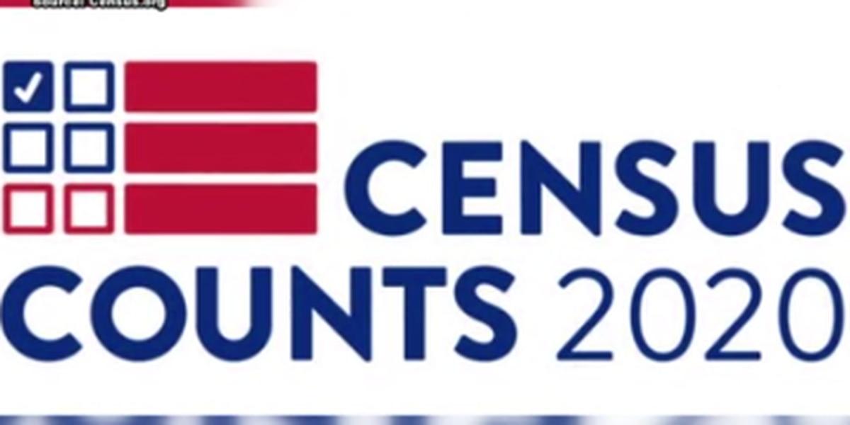 Despite judge's order, plans being made for census layoffs